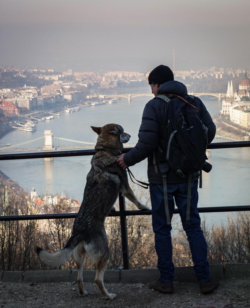 Stunning views offered at the Citadella. (Citadel) - Budapest