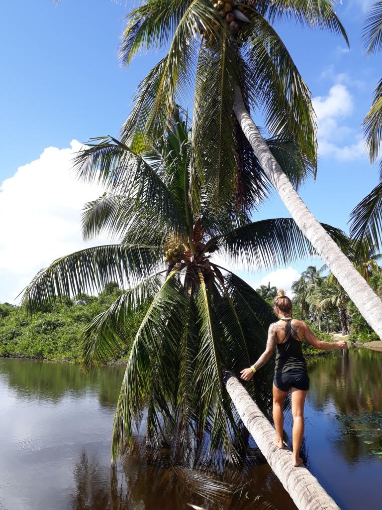 ...Grand Cayman