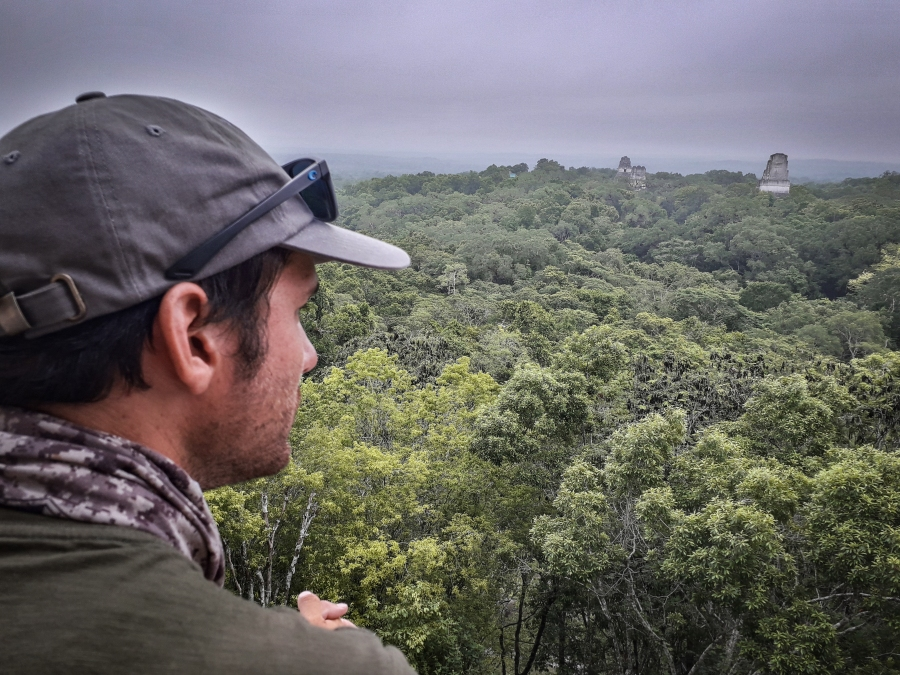High above the already-towering jungle canopy on temple IV, I take in the view of the other temples thrusting through the treetops.