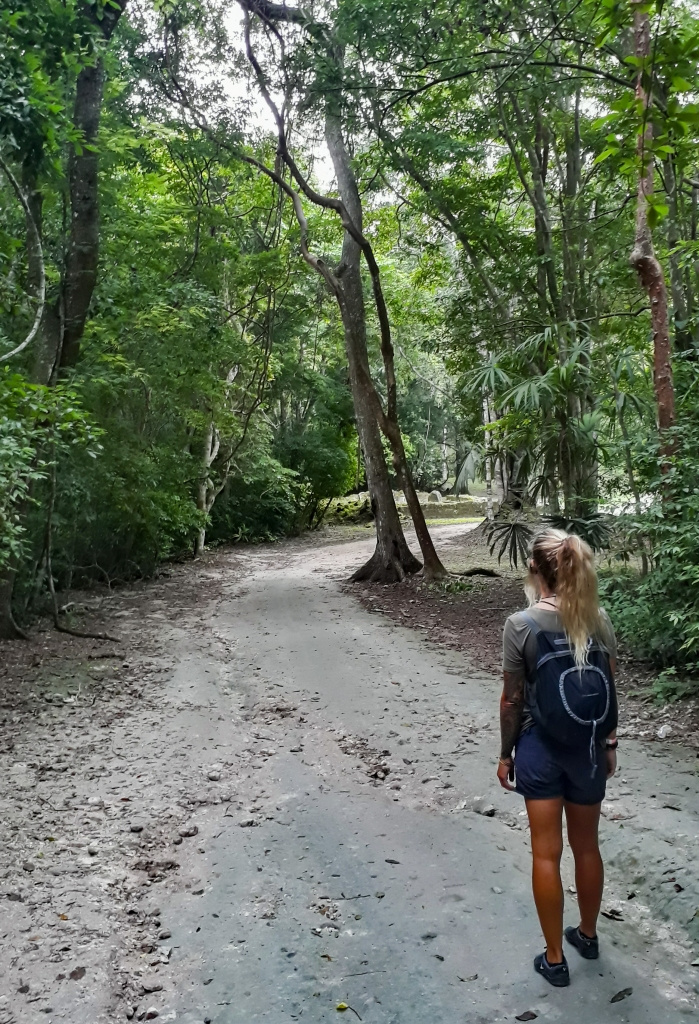 Pathway through the Jungle leading to the site